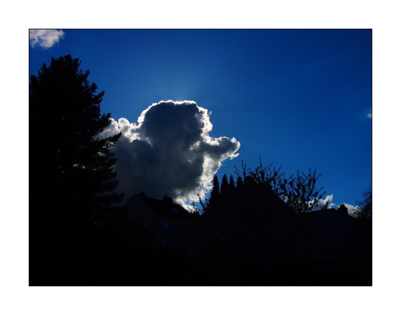 Wolken-Nasenmann
