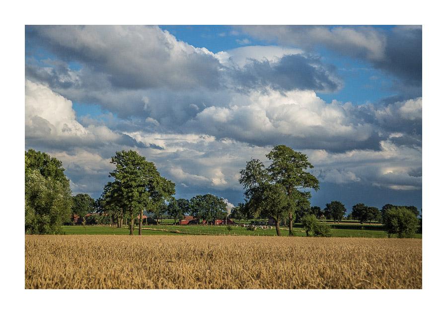 Wolken - regenschwer