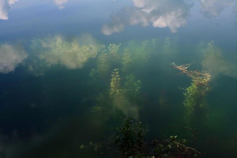 Wolken spiegeln sich im Baggersee