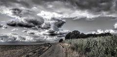 Wolken über den Feldern