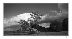 Wolken über Friesland