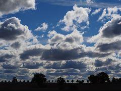 Wolken und Bäume ...