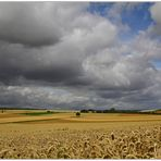 Wolken, Wind, Weite