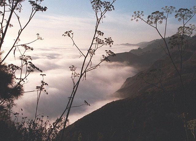 Wolkendecke über dem Pazifik - Highway 1