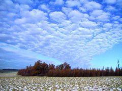 Wolkenhimmel  Sonntag 25.Nov.01