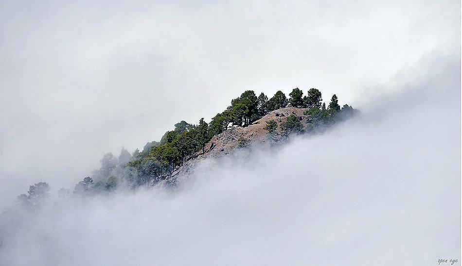 _ Wolkeninsel der Träume _ La Palma _