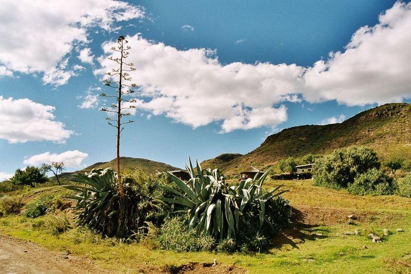 Wolkenkratzer in Lesotho