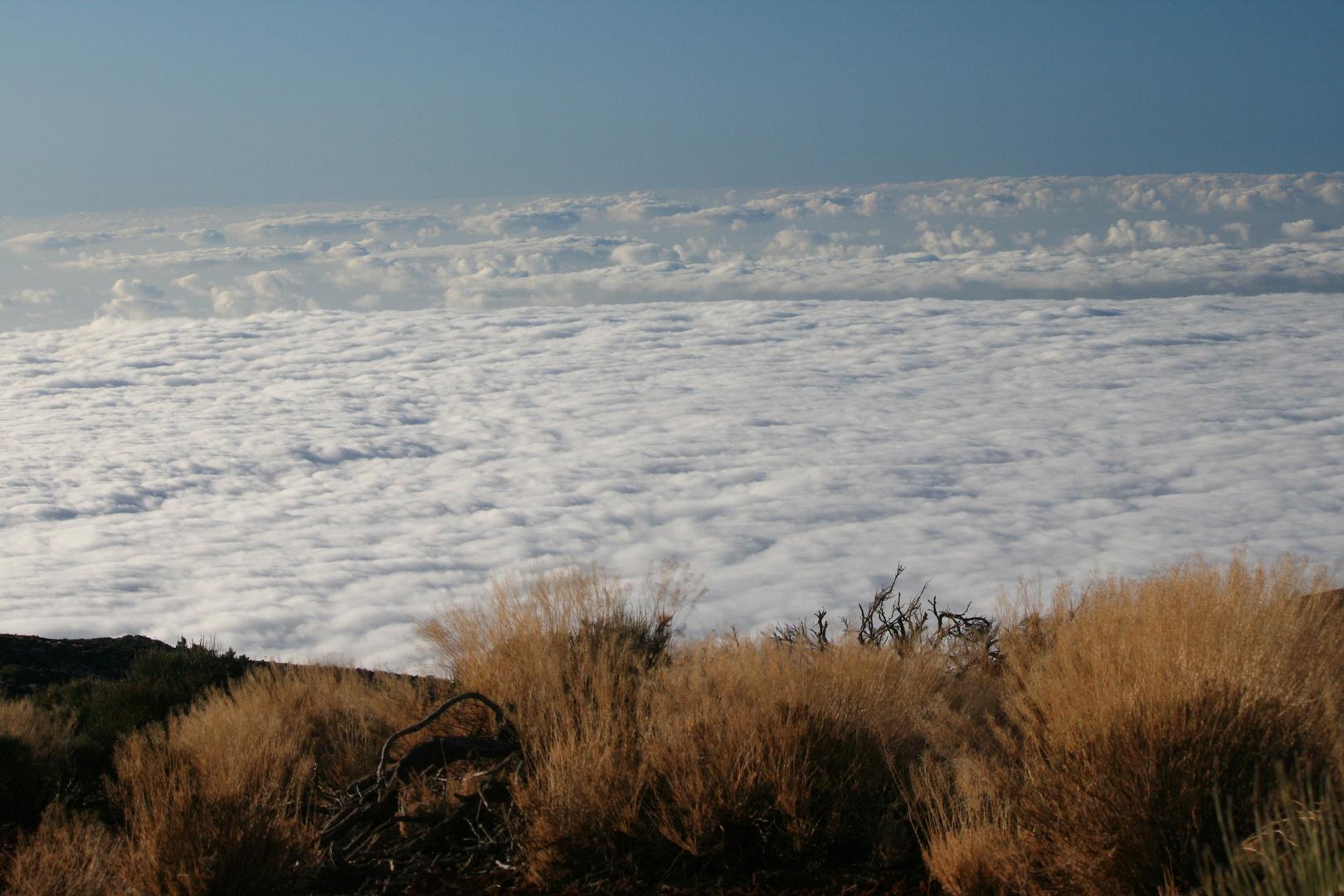 Wolkenmeer über La Orotava