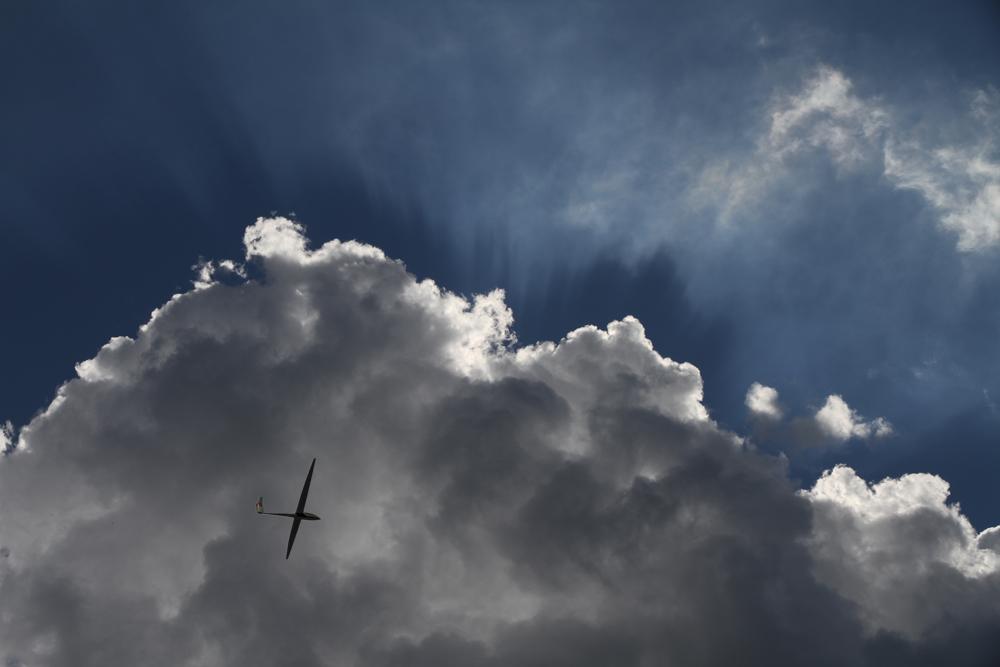Wolkensegler