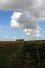 Wolkenstrasse direkt über dem Feldweg