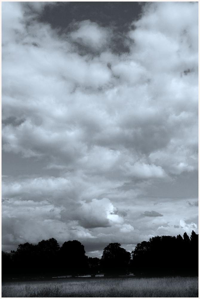 Wolkentag im Park