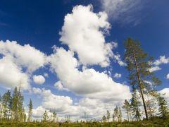 Wolkentreiben