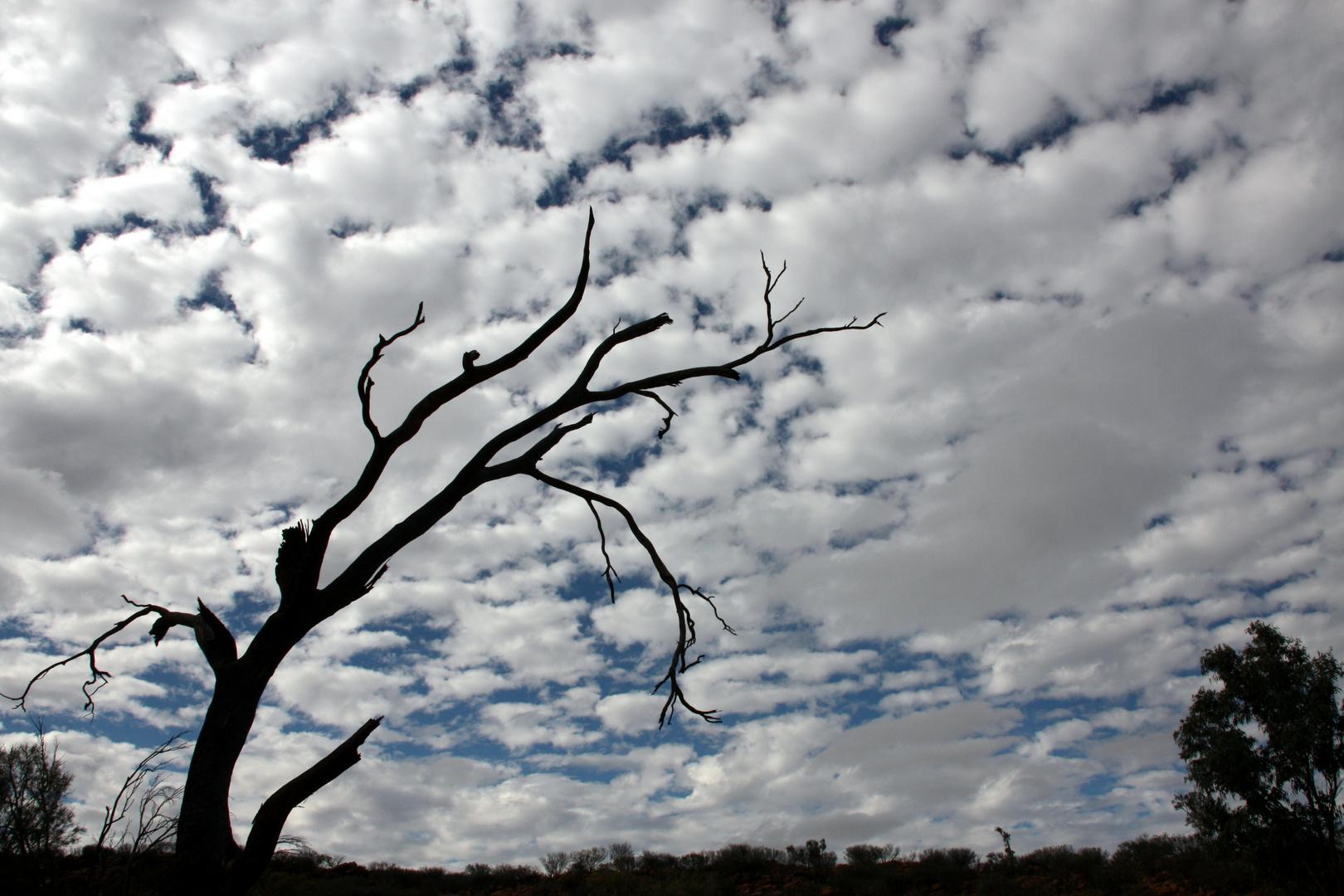 Wolkenwatte über dem Outback nahe Alice Springs
