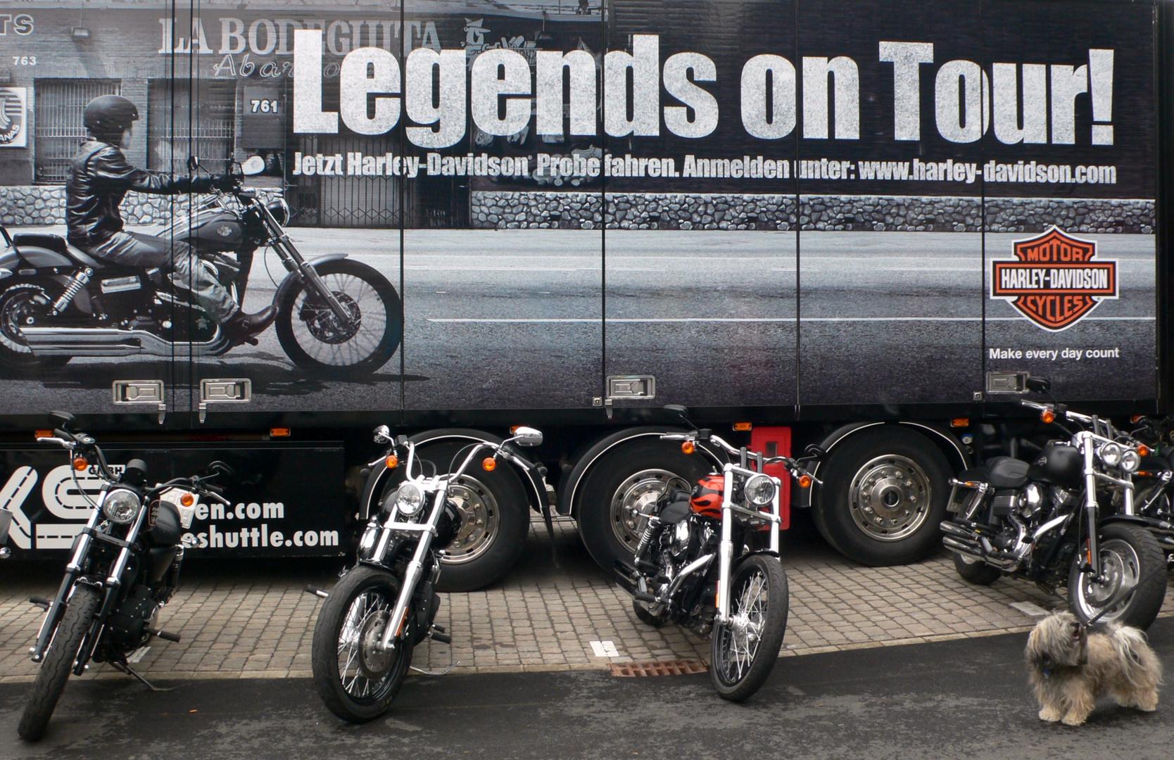 Wollen wir ne Runde Harley fahren?