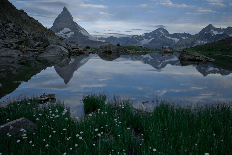 Wollgras trifft Matterhorn