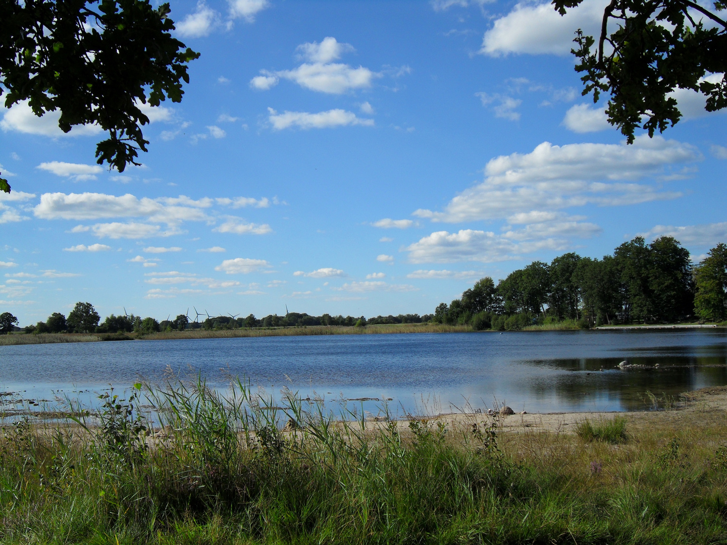 Wollingster See