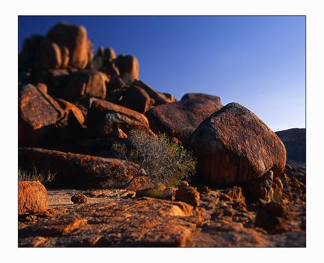 Wolwedans (Namibia)