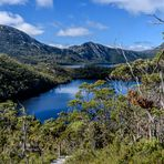 Wombat Pool Track im Cradle-Mountain-NP (Tasmanien)