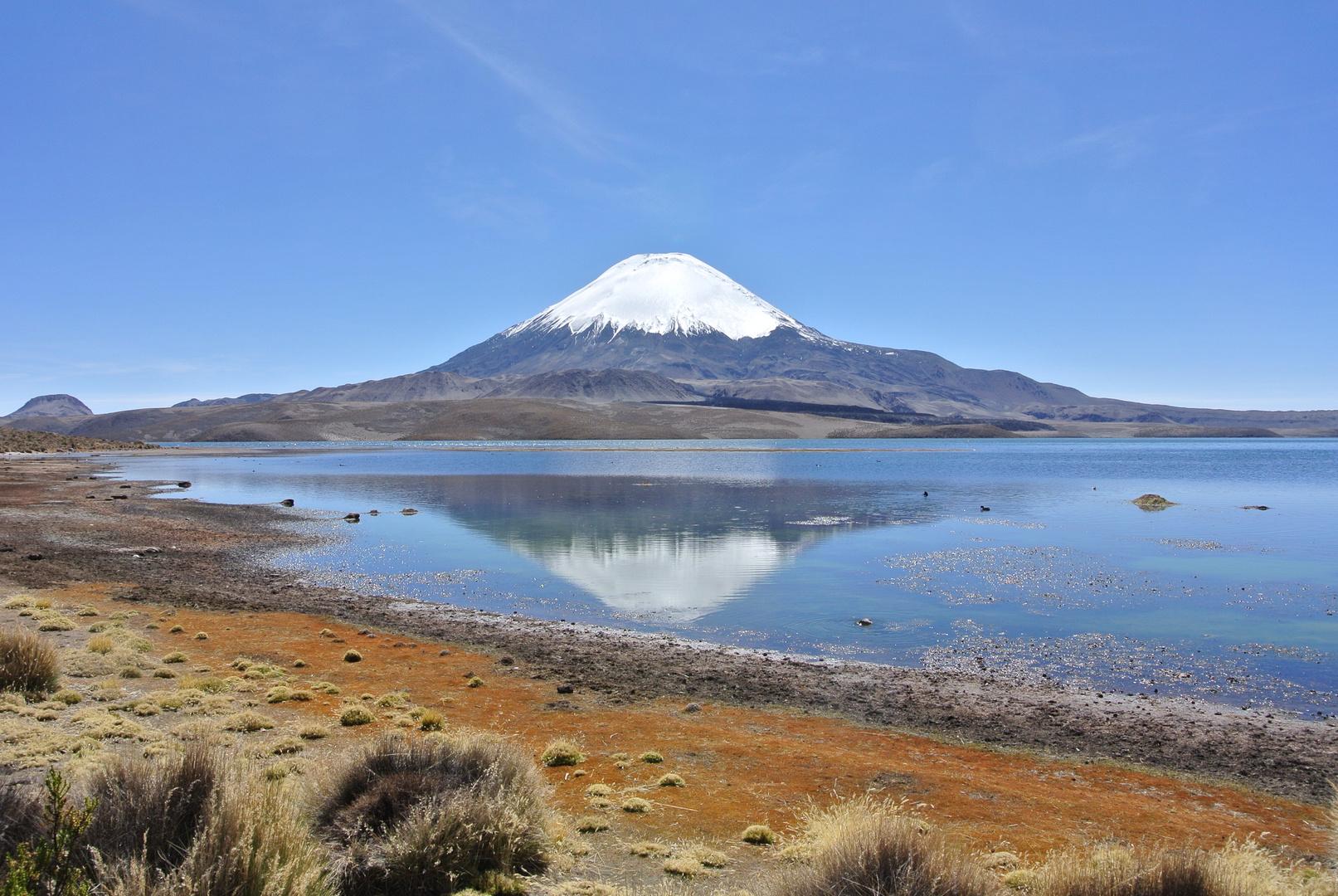 Wonderful Chile
