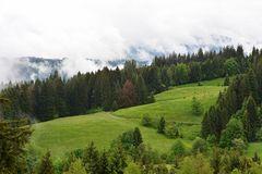 *wonderful nature*