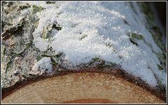 wood on ice - ice on wood