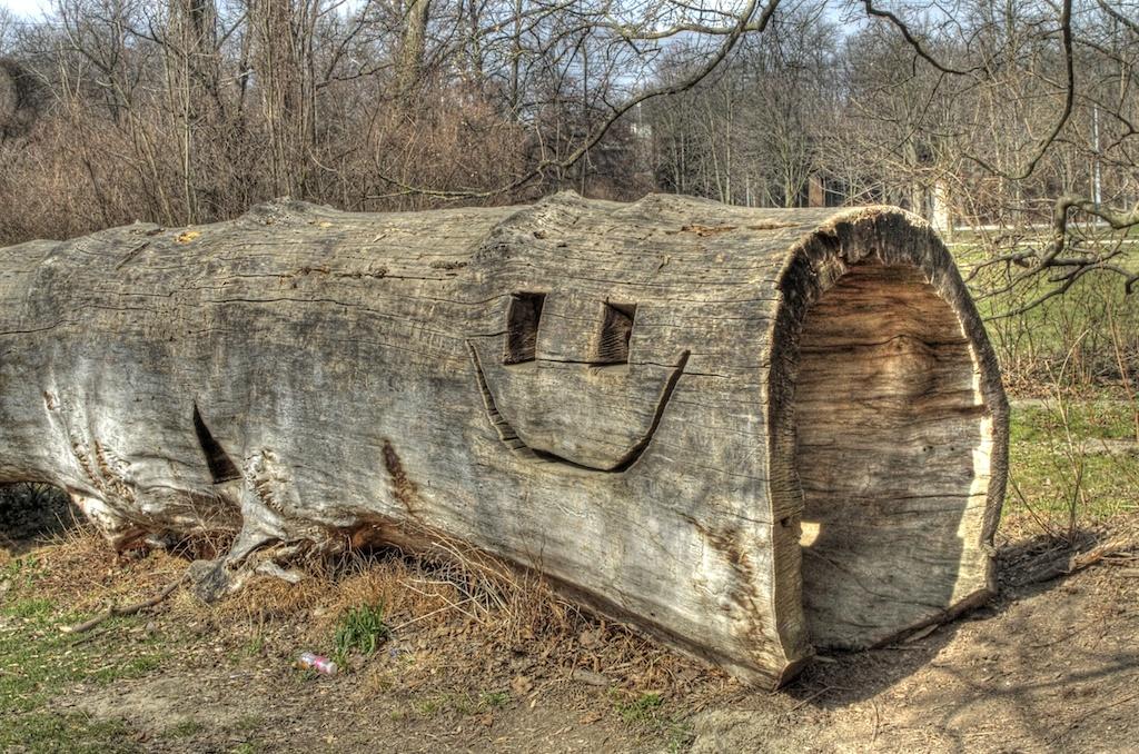 Wood Smilie