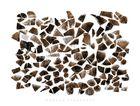 Wooden Fragments