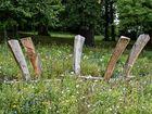 Woodhenge?