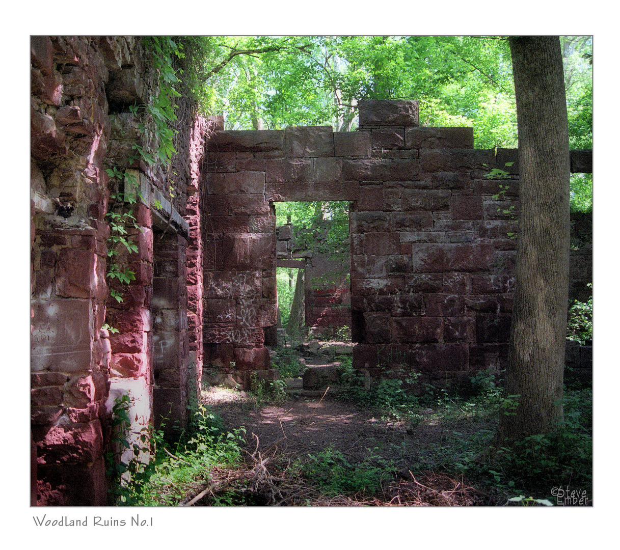 Woodland Ruins No.1 (F11 for best viewing)