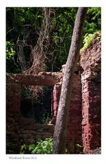 Woodland Ruins No.2 (F11 for best viewing)