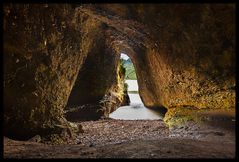 Woodpecker's Cave
