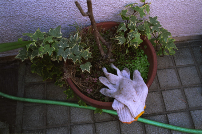 work-gloves 82