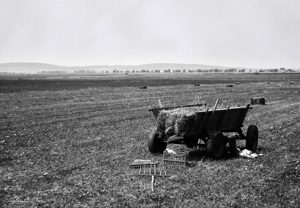 work in the field