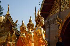 working buddhas