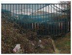 world behind fences #19