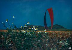 Worte segeln über Blumen