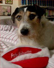 Wouff, wouff, frohe Weihnacht