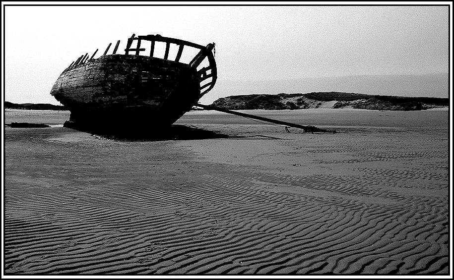 Wrack am Strand von...