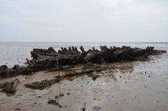 Wrack im Wattenmeer