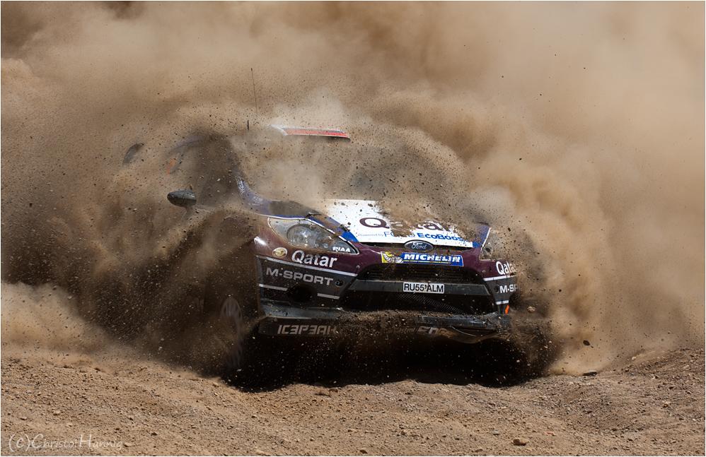WRC Staubwedel