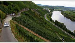 WRC = Wein-Rallye-Championship