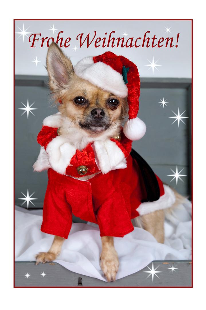 wünsche allen ein schönes Weihnachtsfest und einen guten rutsch ins ...