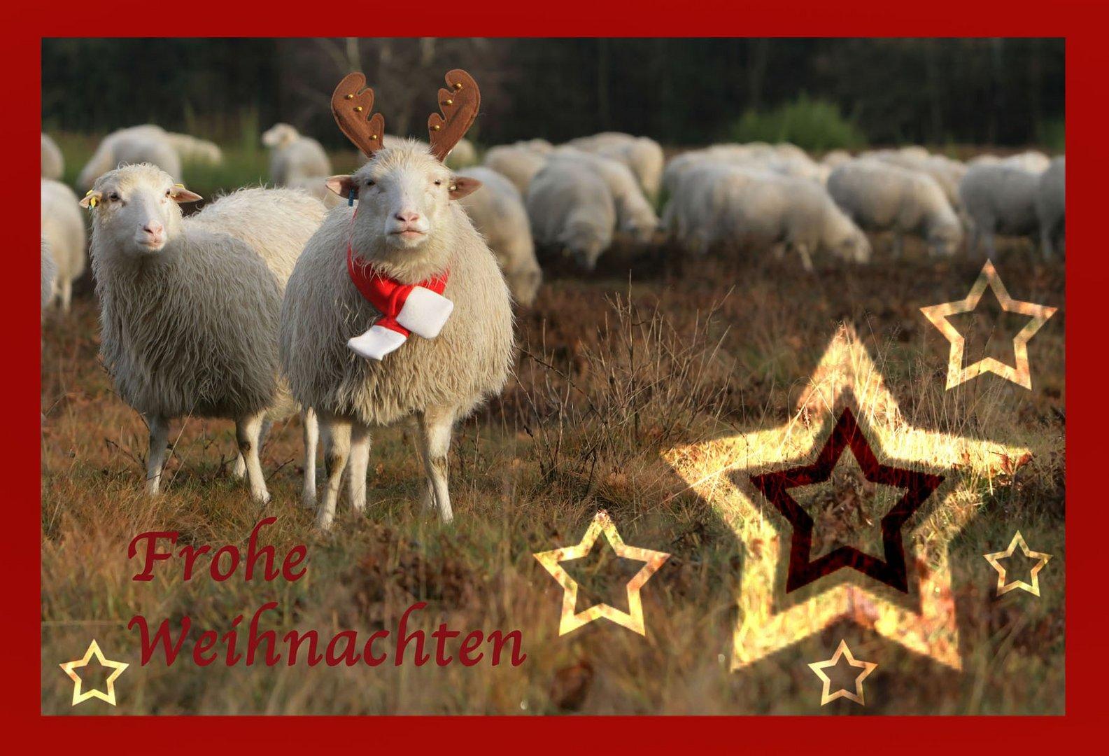 Wünsche.... Foto & Bild | gratulation und feiertage, weihnachten ...