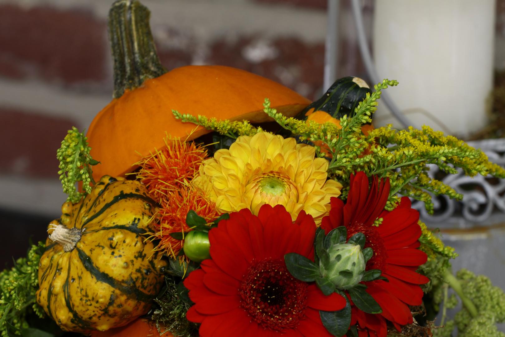 wünsche Euch allen ein schönes Wochenende und tolle Herbstmotive.