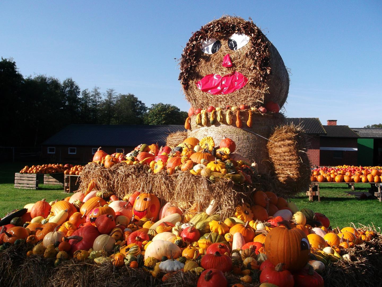 wünsche euch eine schöne Herbstzeit.....