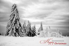 Wünsche Euch Frohe und Gesunde Weihnachten