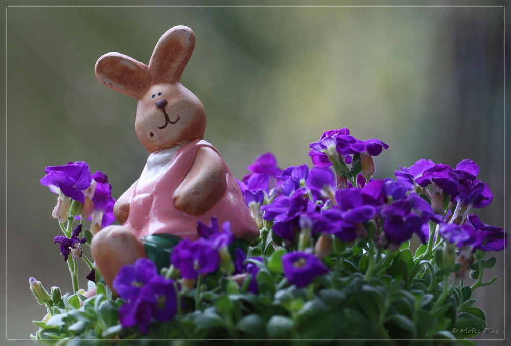 Wünsche frohe Ostertage gehabt zu haben ...