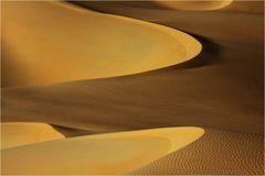 Wüste (11)