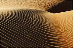Wüste (14)