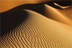 Wüste (8)